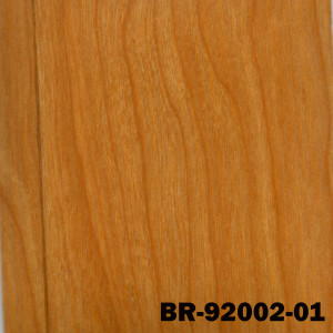 BR-92002-01