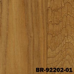 BR-92202-01