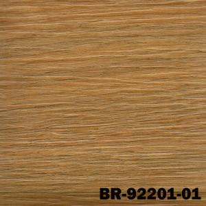 BR92201-01